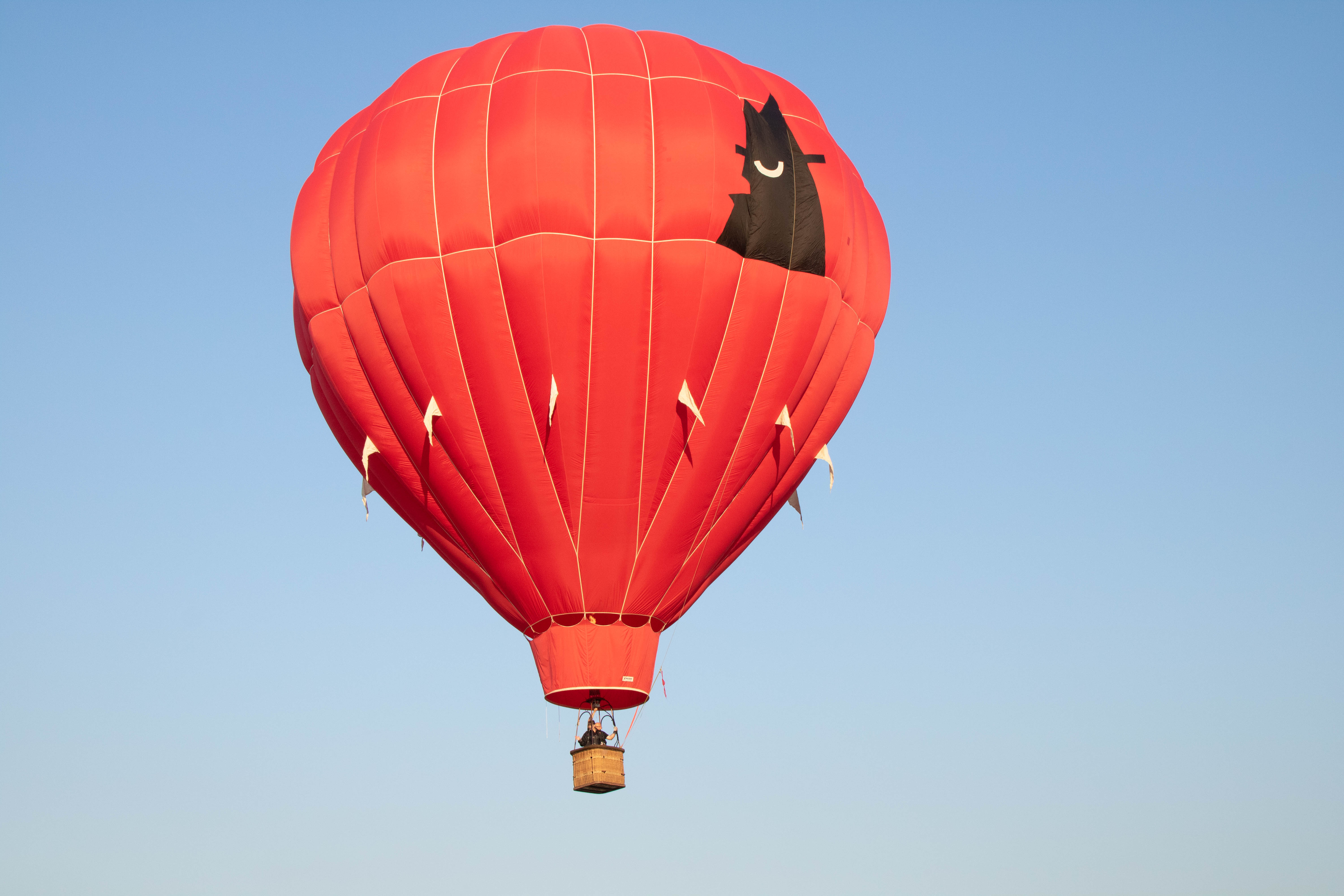190409 Red Alert Balloon in sky flight Flight - Astonishingly, hot air balloon takes to the air after 22 year hiatus
