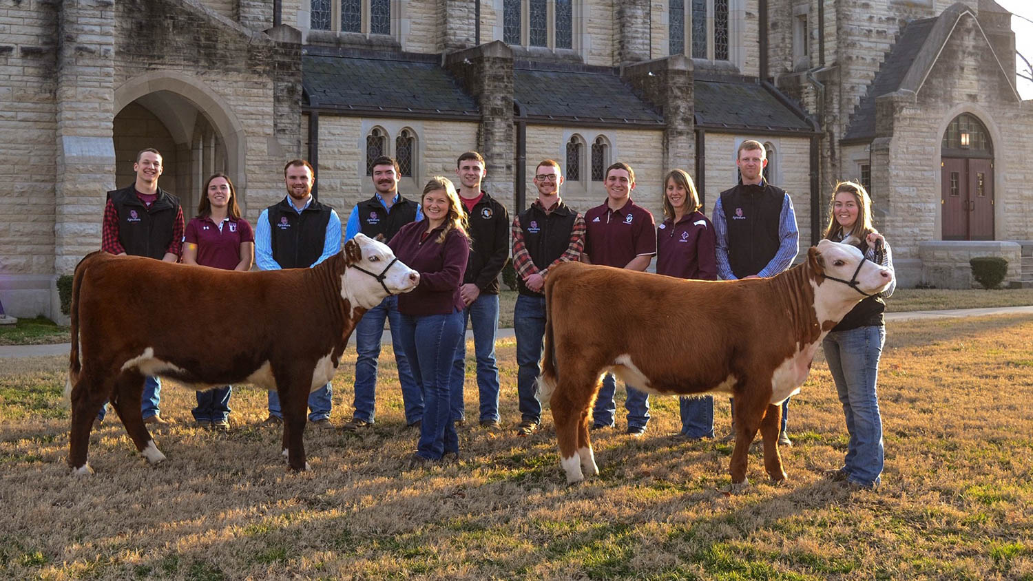 191114 C of O Beef Sale Students - C of O holding one of a kind Registered Hereford Sale